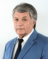 Анатолий Евгеньевич Панич
